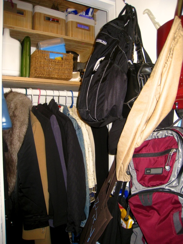 Full View / Coat Closet